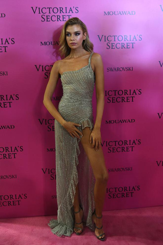Mỹ nhân Tình người duyên ma khoe thân hình đồng hồ cát trên thảm hồng Victoria's Secret 2017 - Ảnh 18.