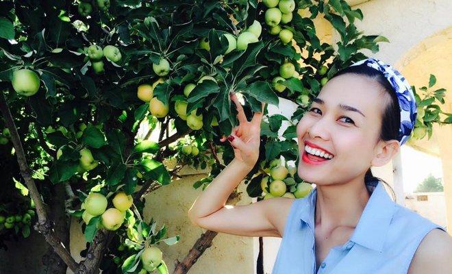Cận cảnh khu vườn có nhiều loại rau củ Việt của hoa hậu Dương Mỹ Linh trên đất Mỹ - Ảnh 16.