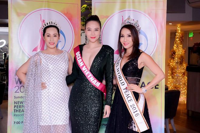 Dương Yến Ngọc bất ngờ nhận 2 giải thưởng tại Hoa hậu quý bà 2017 - ảnh 6