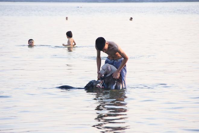 Nắng nóng đỉnh điểm, chủ mặc kín như ninja lội nước, chó cưng vùng vẫy ở Hồ Tây - Ảnh 2.