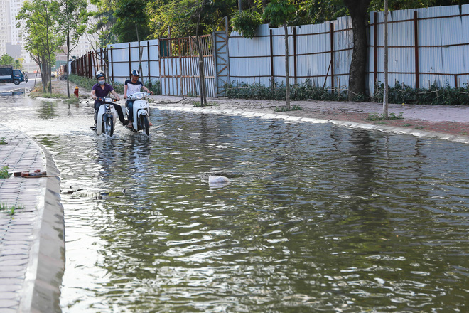 Hà Nội: Ngập úng quanh năm, người dân thả vịt ngay trên đường khu đô thị - Ảnh 2.