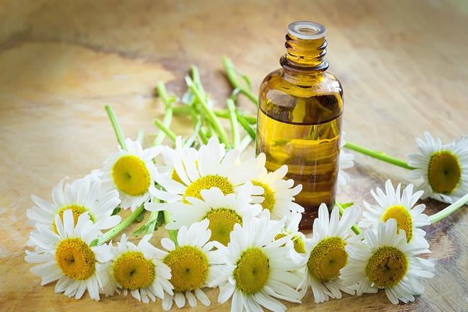 4 loại tinh dầu giúp tăng tối đa hiệu quả dưỡng ẩm cho làn da khô nứt nẻ trong mùa lạnh  - Ảnh 3.
