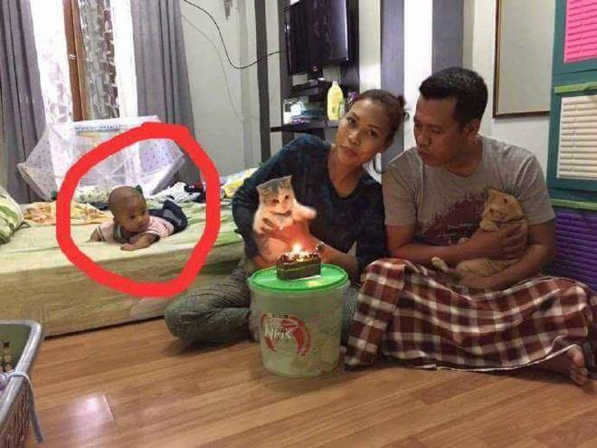 Bố mẹ bỏ bê con trai nằm chơ vơ trên giường để chuyên tâm tổ chức sinh nhật cho… mèo - Ảnh 1.