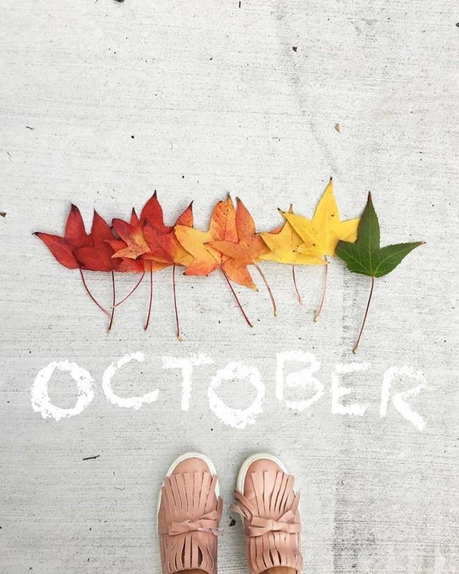 Lời nhắc nhở cho 12 con giáp trong tháng 10 - Ảnh 2.
