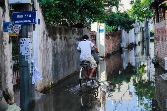 Con ngõ ngập đầy nước cống cho dù Hà Nội có nóng hơn 40 độ C - Ảnh 5.