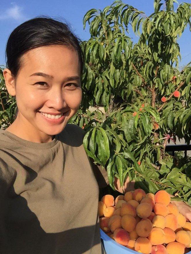 Cận cảnh khu vườn có nhiều loại rau củ Việt của hoa hậu Dương Mỹ Linh trên đất Mỹ - Ảnh 15.