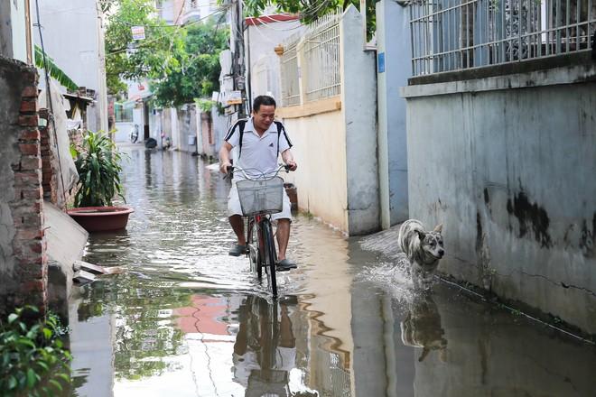 Con ngõ ngập đầy nước cống cho dù Hà Nội có nóng hơn 40 độ C - Ảnh 9.