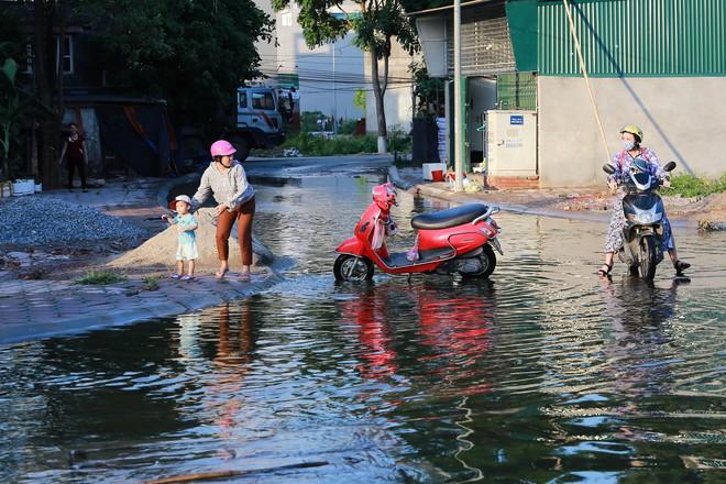 Hà Nội: Ngập úng quanh năm, người dân thả vịt ngay trên đường khu đô thị - Ảnh 8.