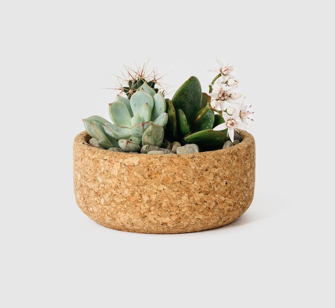 Mang thiên nhiên về nhà với những món đồ làm từ gỗ bần - Ảnh 17.