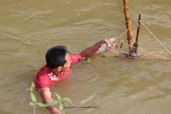 Choáng trước cảnh có 102: Cả làng nhảy xuống sông Tích bắt cá - Ảnh 8.