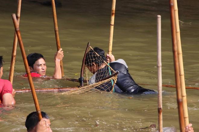 Choáng trước cảnh có 102: Cả làng nhảy xuống sông Tích bắt cá - Ảnh 4.