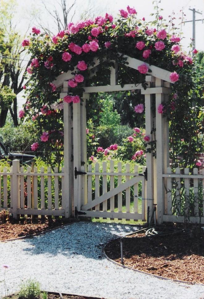 Chiêm ngưỡng vẻ đẹp lộng lẫy của những chiếc cổng nhà tràn ngập hoa - Ảnh 12.