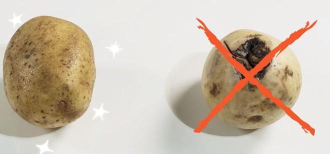 """Mua khoai tây cứ nhẩm trong đầu 4 """"thần chú"""" sau thì chắc chắn 10 củ ngon như một - Ảnh 1."""
