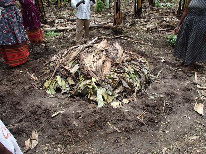 Thấy người dân đổ đống chuối vào thân cây gỗ rồi giẫm nát, ai cũng ghê nhưng không ngờ đây là thức uống vạn người mê - Ảnh 3.