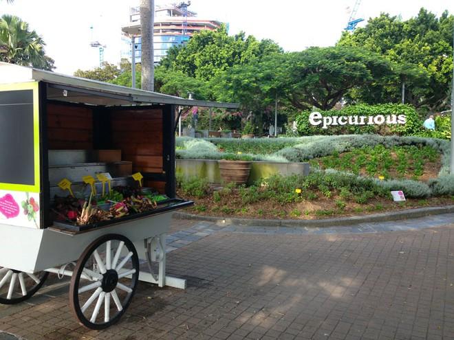 Có một công viên tràn ngập rau xanh và rau ở đây được phát hoàn toàn miễn phí - Ảnh 13.