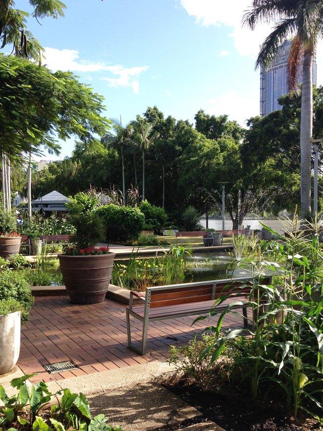Có một công viên tràn ngập rau xanh và rau ở đây được phát hoàn toàn miễn phí - Ảnh 8.