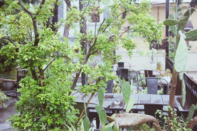 5 quán cafe vừa chất, vừa đẹp ẩn mình trong những ngôi biệt thự cổ ở Hà Nội - Ảnh 34.