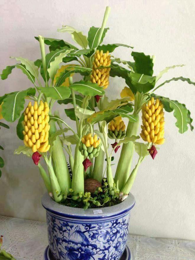 10 chậu bonsai cây ăn trái mini siêu đẹp dùng trang trí nhà dịp Tết - Ảnh 9.