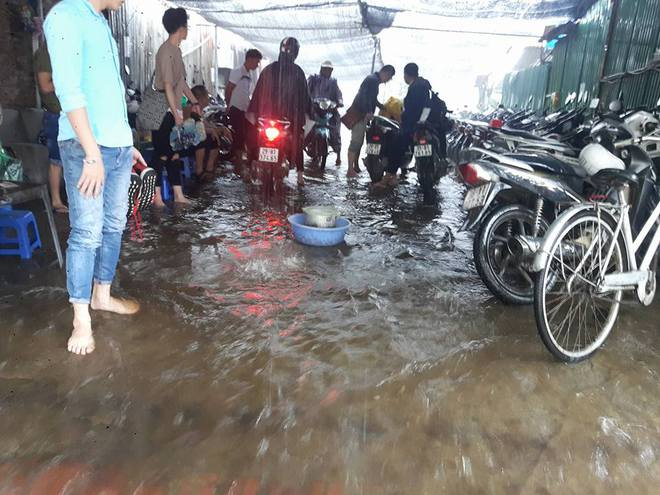 Hà Nội: Nơi mưa ngập trắng băng, dân thi nhau bắt cá, nơi chỉ đủ ướt đường - Ảnh 9.