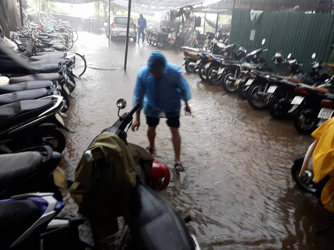 Hà Nội: Nơi mưa ngập trắng băng, dân thi nhau bắt cá, nơi chỉ đủ ướt đường - Ảnh 10.