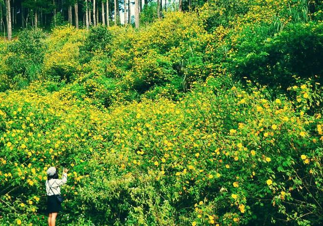4 điểm du lịch Việt đẹp như mơ rất đáng để đi trong tháng 10 - Ảnh 6.