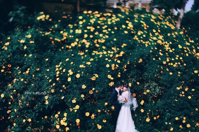 Mùa cưới đến rồi, bỏ túi ngay những địa chỉ chụp ảnh đẹp mê ly với lá vàng, lá đỏ này thôi - Ảnh 20.