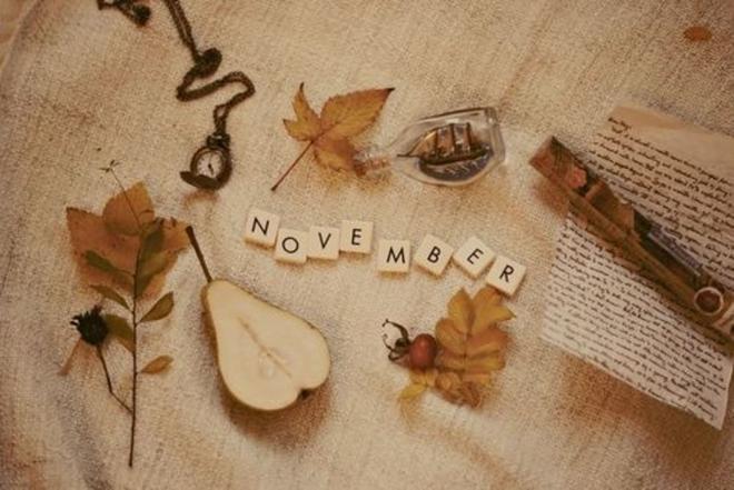 Tháng 11 này, 5 cung Hoàng đạo sau sẽ có tình yêu ngọt ngào và thăng hoa - Ảnh 2.