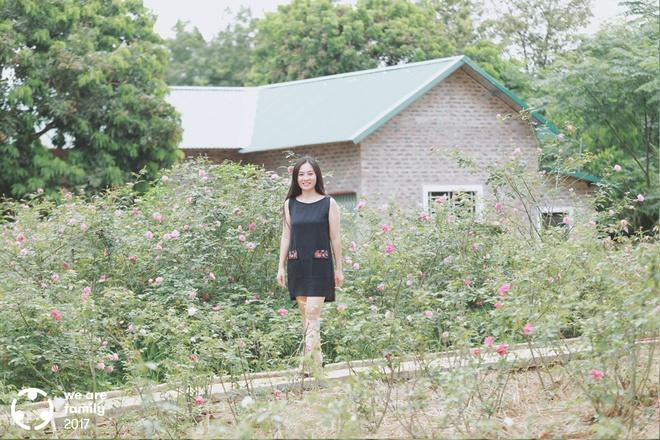 Chuyện của trưởng phòng luật sở hữu 4 ha trang trại trồng hoa hồng giống cổ không hóa chất đẹp như mơ - Ảnh 8.