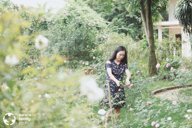 Chuyện của trưởng phòng luật sở hữu 4 ha trang trại trồng hoa hồng giống cổ không hóa chất đẹp như mơ - Ảnh 3.