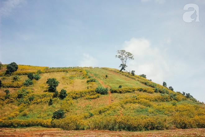 Ở Việt Nam có một điểm đến thơ mộng và lãng mạn chẳng kém Đà Lạt, nhất định nên đến trong dịp cuối năm - Ảnh 10.
