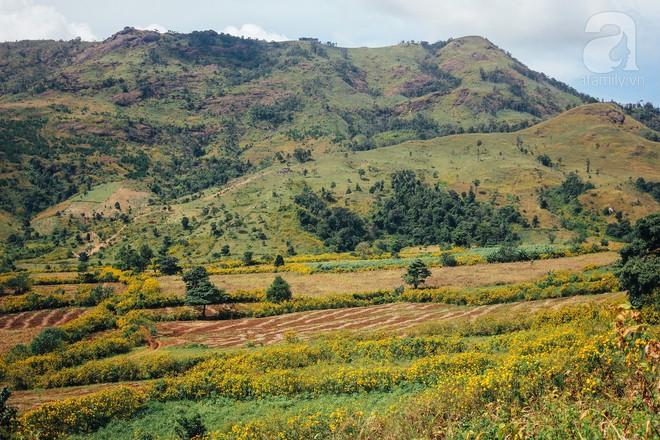 Ở Việt Nam có một điểm đến thơ mộng và lãng mạn chẳng kém Đà Lạt, nhất định nên đến trong dịp cuối năm - Ảnh 11.