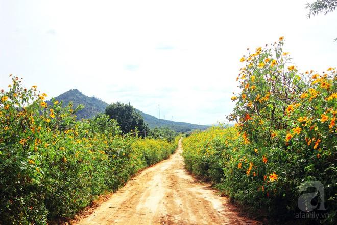 Ở Việt Nam có một điểm đến thơ mộng và lãng mạn chẳng kém Đà Lạt, nhất định nên đến trong dịp cuối năm - Ảnh 4.