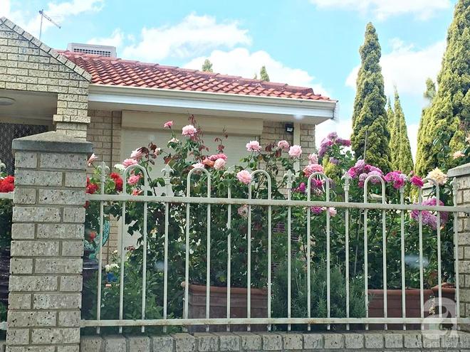 Mất 2 năm gây dựng, vợ chồng người Việt đã biến không gian sống của mình thành ngôi nhà hoa hồng đẹp ngẩn ngơ - Ảnh 4.