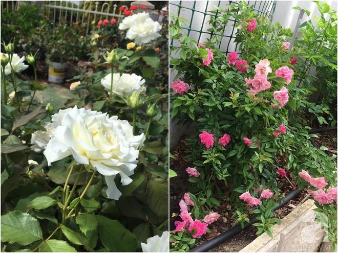 Mất 2 năm gây dựng, vợ chồng người Việt đã biến không gian sống của mình thành ngôi nhà hoa hồng đẹp ngẩn ngơ - Ảnh 41.