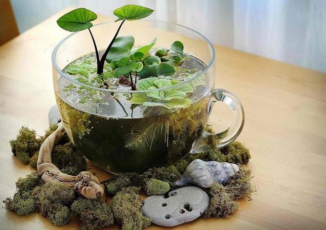 12 cách biến tấu tách uống trà thành đồ vật trang trí nhà đẹp mắt - Ảnh 9.