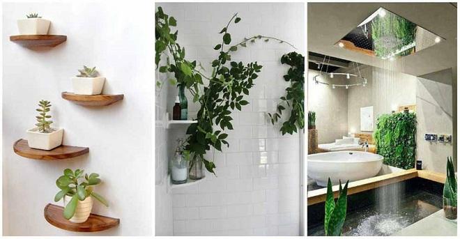 """""""Nhà tắm thực vật"""" – cách đơn giản để nhà tắm thêm mát mẻ trong ngày hè nắng nóng - Ảnh 4."""