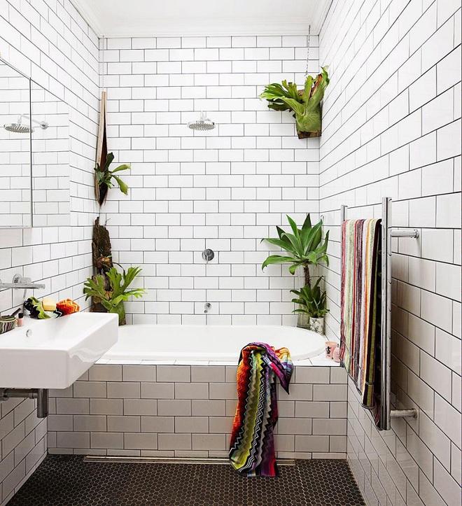 """""""Nhà tắm thực vật"""" – cách đơn giản để nhà tắm thêm mát mẻ trong ngày hè nắng nóng - Ảnh 7."""