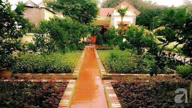 Khu vườn rộng gần nghìn m² đầy hoa và rau xanh của cô giáo dạy toán - Ảnh 12.