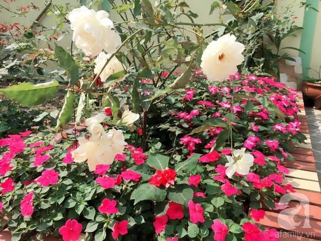 Khu vườn rộng gần nghìn m² đầy hoa và rau xanh của cô giáo dạy toán - Ảnh 28.
