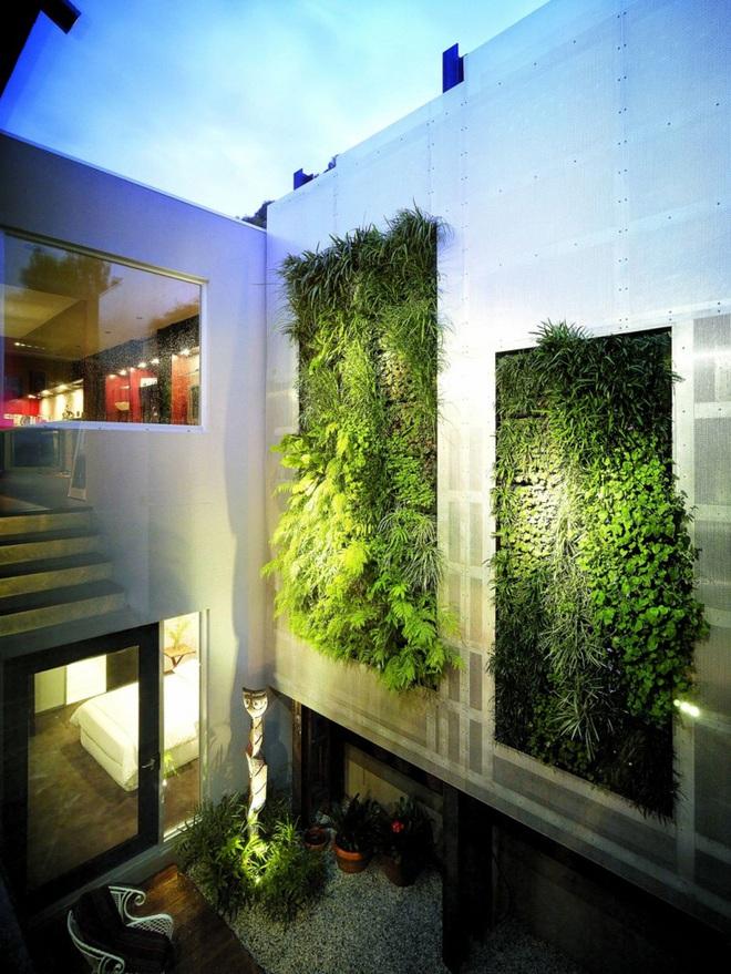 7 lý do khiến những bức tường xanh được các gia đình lựa chọn nhiều đến vậy - Ảnh 2.