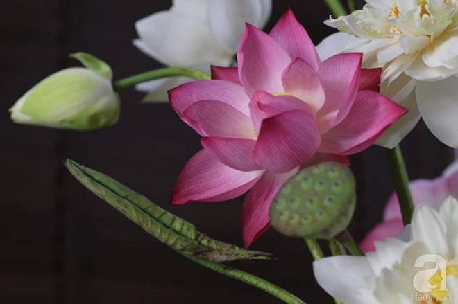 Những cách cắm hoa sen khiến vạn người mê của hai ông bố trẻ - Ảnh 11.