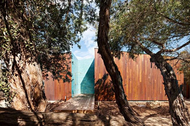Ngôi nhà nằm giữa núi rừng gây ngạc nhiên vì quá đẹp và thơ mộng - Ảnh 8.