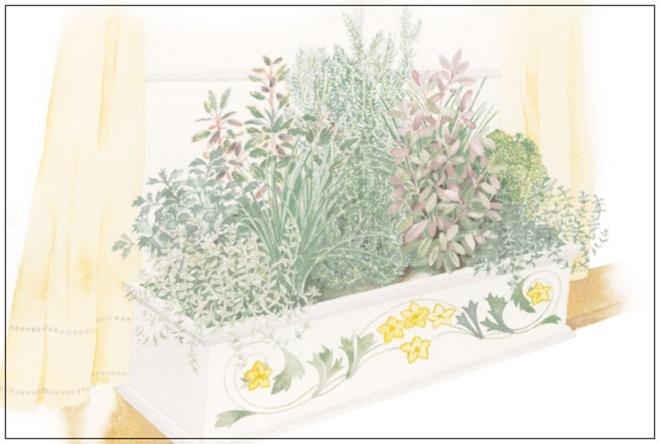 Những thiết kế đẹp bạn có thể học tập để tạo sân vườn xinh tại nhà - Ảnh 10.