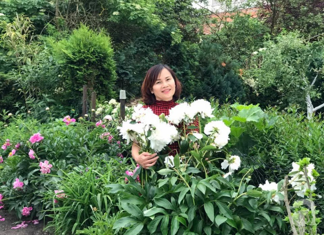 Khu vườn hoa mẫu đơn rộng 1000m² đẹp như trong cổ tích của mẹ Việt ở Đức  - Ảnh 2.