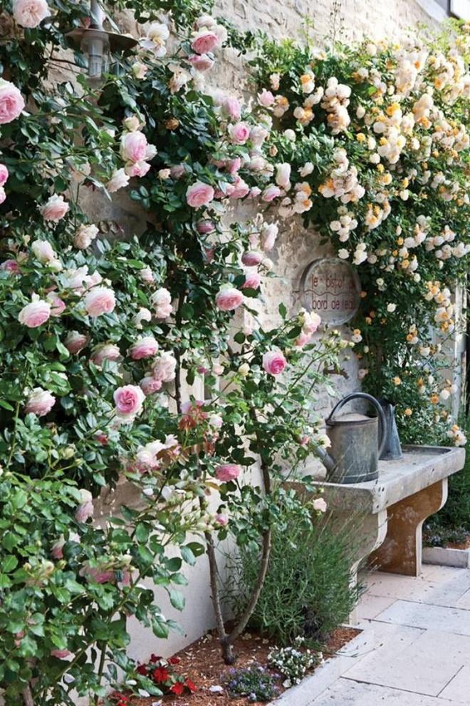 Nghệ thuật làm vườn đỉnh cao của nữ đầu bếp giàu nhất thế giới - Ảnh 15.
