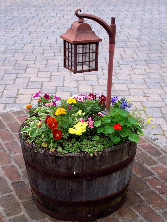 20 cách tạo luống hoa đẹp như chốn mê cung cho khu vườn mùa hè - Ảnh 5.