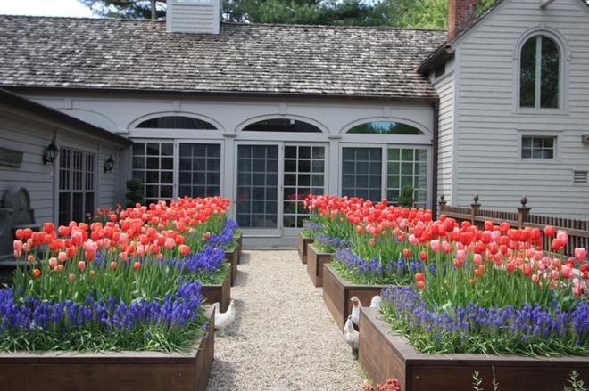 20 cách tạo luống hoa đẹp như chốn mê cung cho khu vườn mùa hè - Ảnh 7.