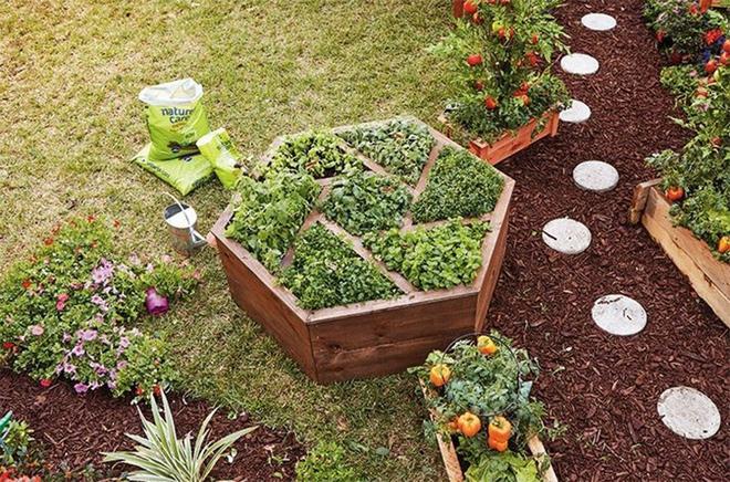 20 cách tạo luống hoa đẹp như chốn mê cung cho khu vườn mùa hè - Ảnh 8.