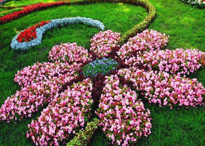 20 cách tạo luống hoa đẹp như chốn mê cung cho khu vườn mùa hè - Ảnh 12.