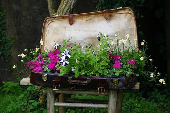 20 cách tạo luống hoa đẹp như chốn mê cung cho khu vườn mùa hè - Ảnh 16.